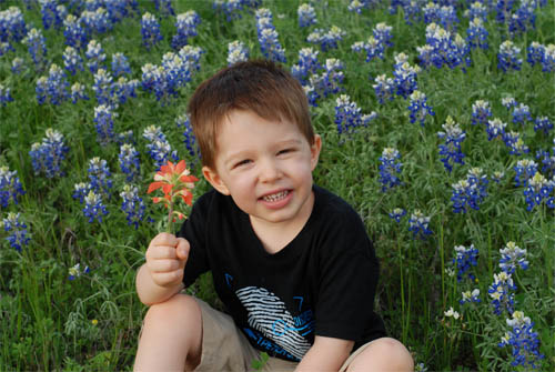 Zach-bluebonnets